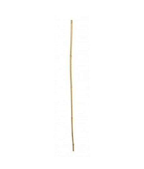 Tuteur jalonnette en bambou, Topographie-lepont.fr